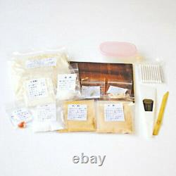 KINTSUGI Beginner Set Japanese Traditional Craft Lacquer from Japan DHL Fast NEW